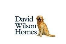 david-nicholson-homes-2