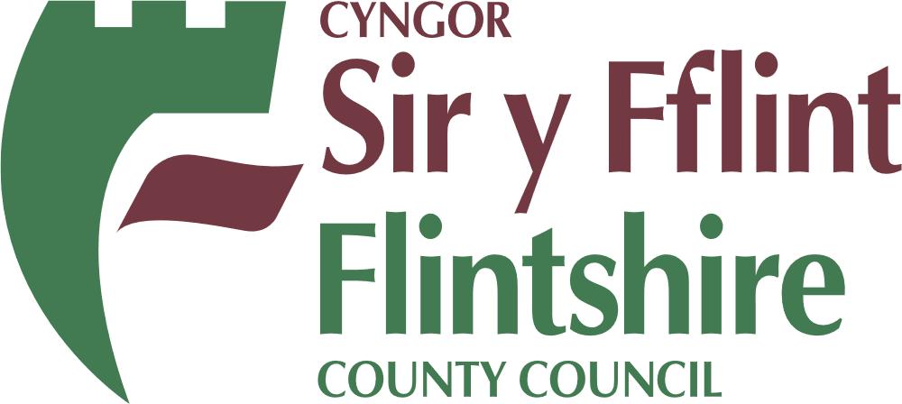 flintshire-county council